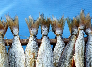 Are fisheries the first casualty in a Brexit split between