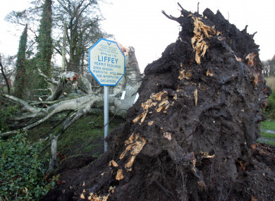 Storm Fionn-related damage in Athgarvan, Co Kildare this week.
