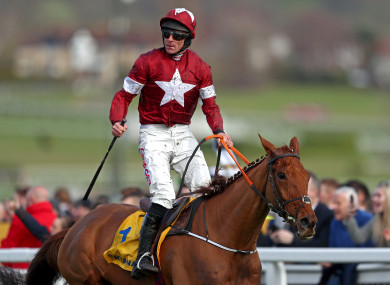 Davy Russell celebrates winning the Ryanair Chase.