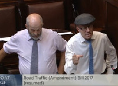 TDs Danny and Michael Healy-Rae