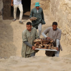 Workers carry cat mummies out of the tomb of Khufu-Imhat, one of seven tombs belonging to the New and Old Kingdoms of Egypt.<span class=