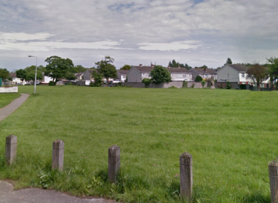 Gardaí say four men are belived to have escaped on foot across this field.