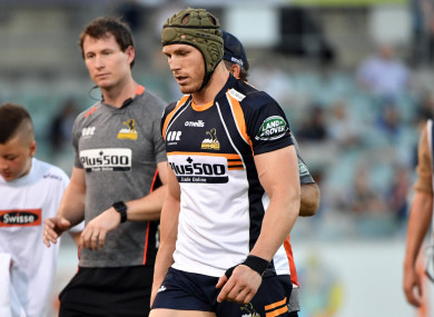 Pocock in Brumbies gear in February.
