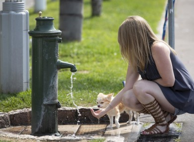 A woman and her dog cool down in Nice, southern France, as the temperatures soar.