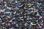 Demonstrators carry umbrellas as they march along a street in Hong Kong today.