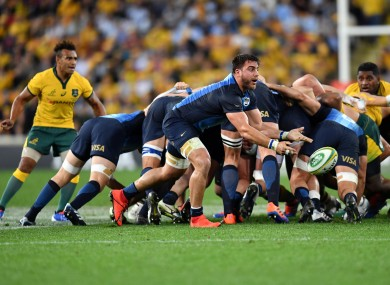 Isa in action against the Wallabies last month.