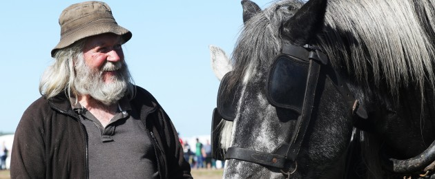 Jerry Dennehy from Kerry with a pair of horses on the first day of the national ploughing championships in Carlow.