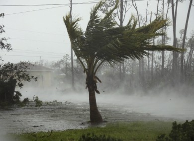 Winds from Hurricane Dorian whip through a neighbourhood in Freeport, Grand Bahama.