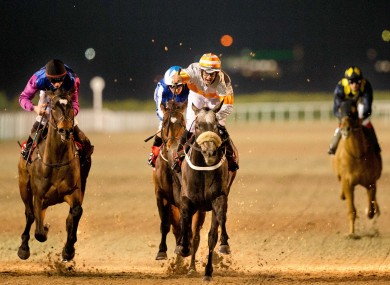 Dundalk Stadium will undertake the installation of a new all-weather surface next year.