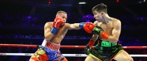 Conlan: comfortable winner in the Garden.