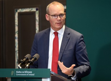 Simon Coveney at a press briefing this week.