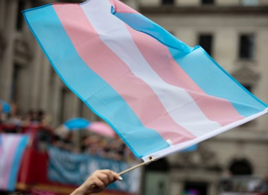 Stock image of the trans flag.