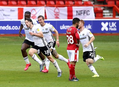 Fulham's Harry Arter (second left) celebrates scoring.