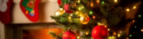 Poll: When are you putting up your Christmas tree?