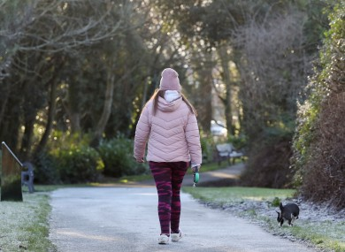 Pictured is a member of the public out for a walk with their dog in an icy Johnstown Park this morning, as temperatures are predicted to plummet to as low as -8 degrees overnight.