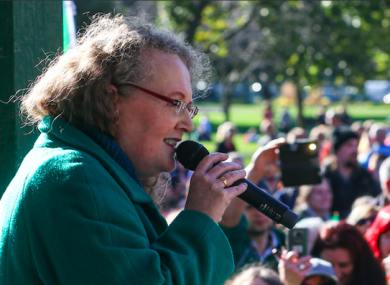 Cahill addressing the event in Herbert Park