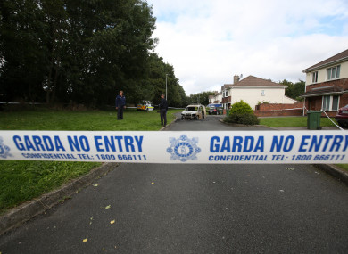 Wayne Whelan was shot a number of times while in his car in at Griffeen Glen Park, Lucan.