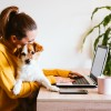 'If everyone has to tiptoe around, it's not working': How to plan the perfect work-from-home space in your new house