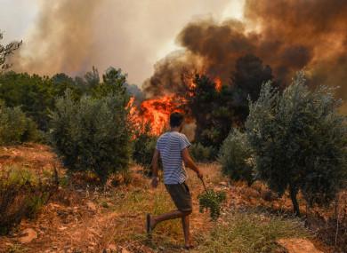 Wiildfires in Kacarlar village near the Mediterranean coastal town of Manavgat, Antalya, Turkey.