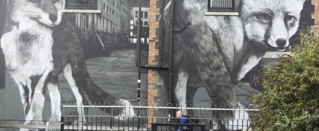 Mural of two city foxes by artist Shane Sutton on Dorset street in Dublin today.