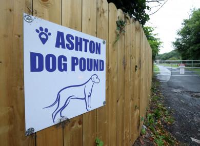 Ashtown Dog Pound (file photo)