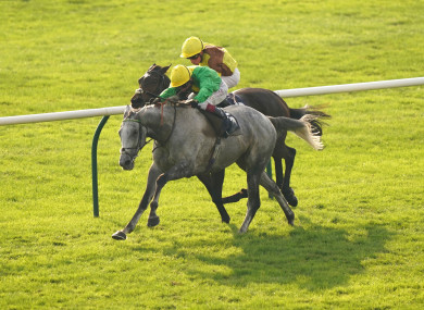 Oisin Murphy and Buzz (grey) on their way to winning the Cesarewitch at Newmarket.